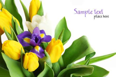 Bouquet of tulips photo