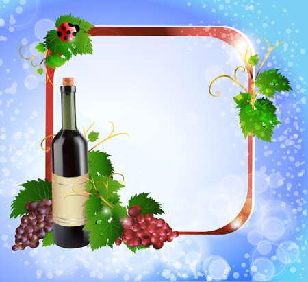 포도와 반사 와인 한 병 벡터 (일러스트)
