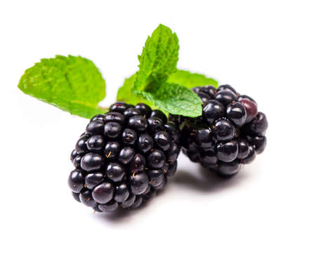 Blackberry with  mint leaves isolated in white Stok Fotoğraf