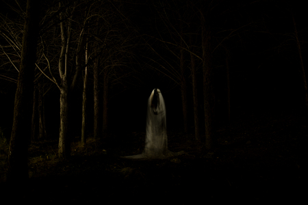 Picture of a ghost in the middle of the forest with total darkness and made using the lightpainting technique