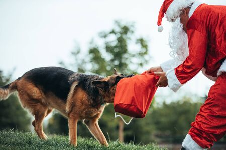 Stock photo of Santa claus sitting on the lawn, playing with his dog. Christmas time and Noel