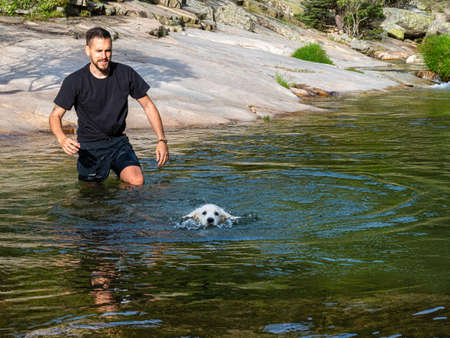 Dog handler teaching puppy to swim in lagoon. White puppy learning to swim alone in a lake. Foto de archivo