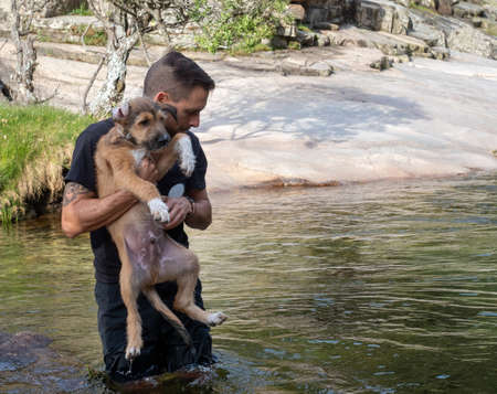 Close-up of dog handler holding puppy to teach him to swim in a lake. Brown puppy learning to swim in a lake. Foto de archivo