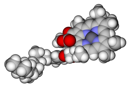 chemical bonds: Chlorophyll A space filling molecular model