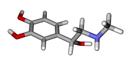 adrenaline: Adrenaline molecule on a white background