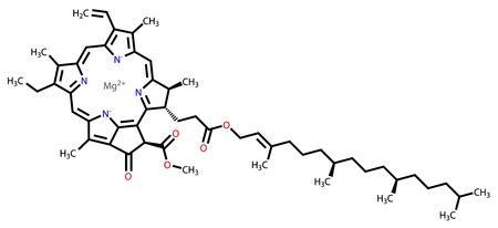 enlaces quimicos: La clorofila una f�rmula estructural