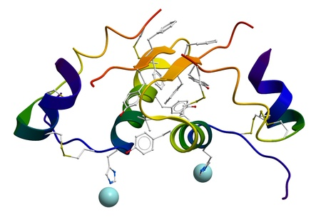 Human insulin molecular structure Stock Photo