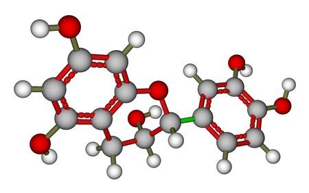 Epicatechin, ein natürliches Antioxidans in Pflanzen gefunden