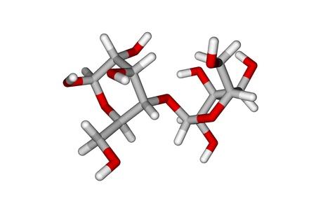 disaccharide: Lactose molecule