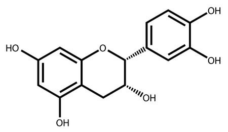 enlaces quimicos: La epicatequina, un antioxidante natural que se encuentra en las plantas