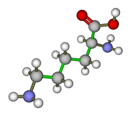 white atom: Essential amino acid lysine molecular structure