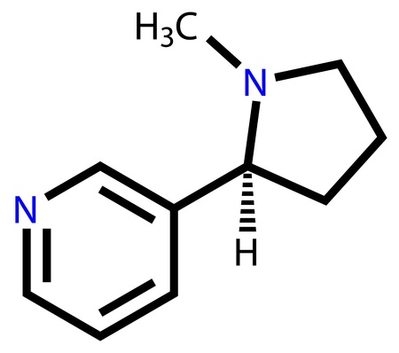 Nicotine structural formula Vector