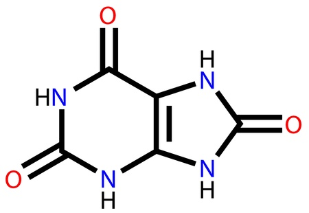 cardiovascular disorders: Structural formula of uric acid