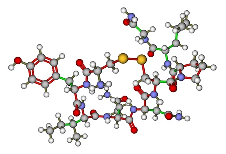 Oxytocin 'love hormone' molecular structure photo
