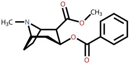 chemical bonds: Cocaine structural formula