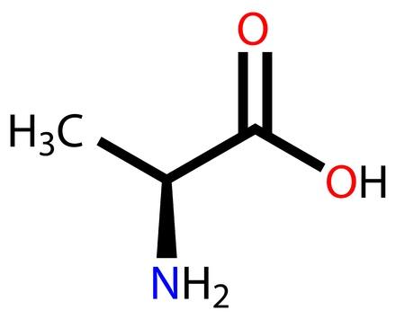 Amino acid alanine structural formula Stock Vector - 12771388