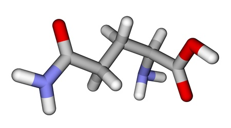 Amino acid glutamine sticks molecular model photo