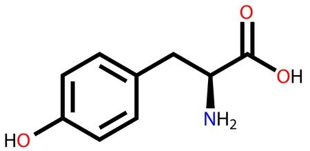 Amino acid tyrosine structural formula Vector