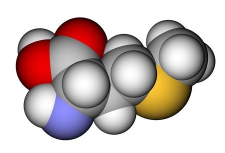 Essential amino acid methionine 3D molecular model photo