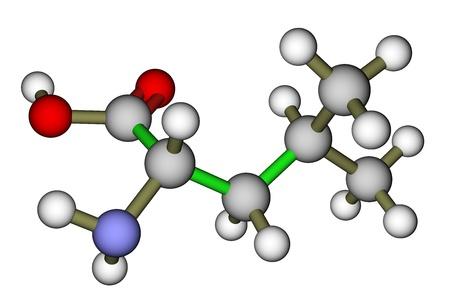 Essential amino acid leucine molecular structure