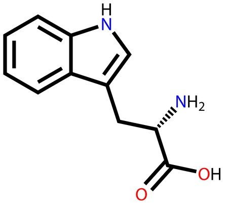 chemical plant: Essential amino acid tryptophan structural formula