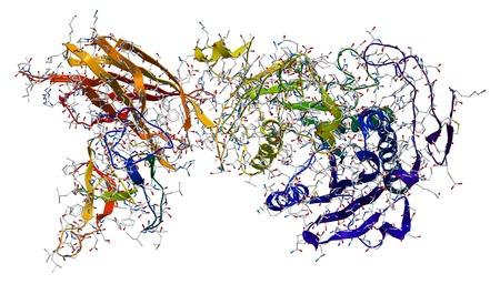 lipid: Enzyme pancreatic lipase-colipase complex