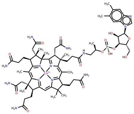 brain food: Vitamin B12 (cobalamin) structural formula Illustration