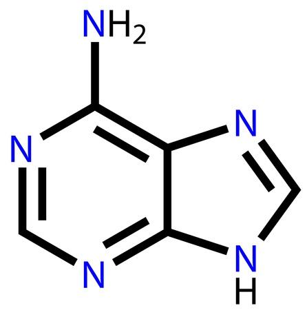 wasserstoff: Nukleobase Adenin Strukturformel Illustration