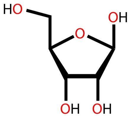 rna: Ribose, a precursor to RNA. Structural formula
