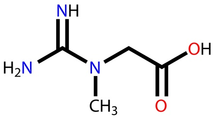 Creatine structural formula Illustration