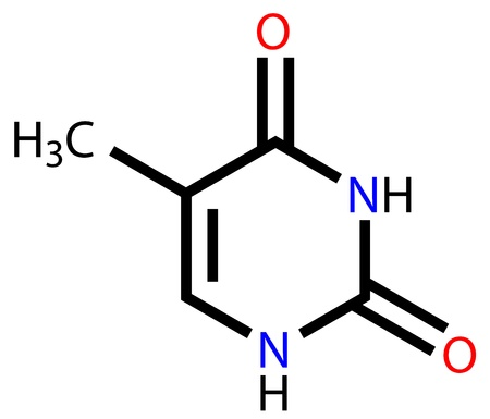 Nucleobase thymine structural formula Vector