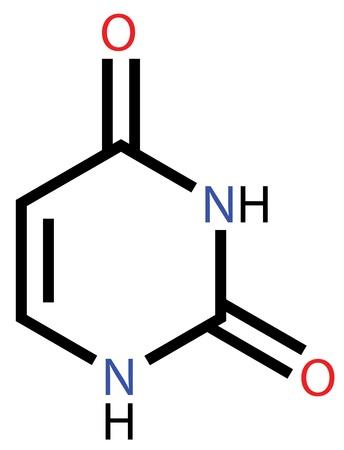 nucleic acid: Nucleobase uracil structural formula