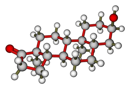 Androsterone, a male sex hormone. Molecular model Stock Photo - 13495765