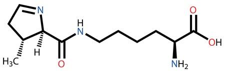 structural: Amino acid pyrrolysine structural formula