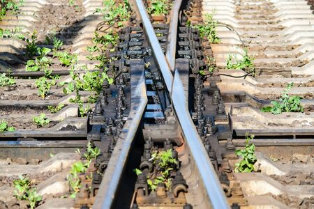 Swingnose railway crossing  Moveable point frog Stock Photo - 14552914
