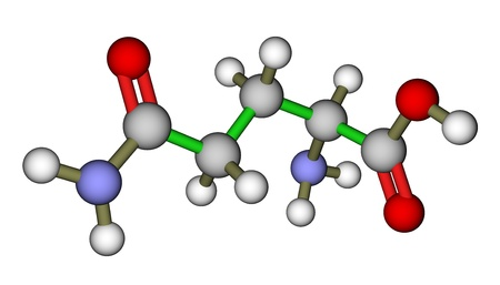 Amino structure de glutamine, un acide mol�culaire photo