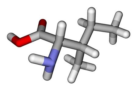 Essential amino acid isoleucine 3D molecular model photo