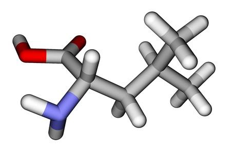 Essential amino acid leucine 3D molecular model photo
