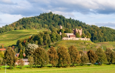 german alcohol: View of Ortenberg castle in The Black Forest  Germany, Baden-Wurttemberg