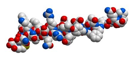 glucagon: Hormone glucagon 3D molecular structure Stock Photo