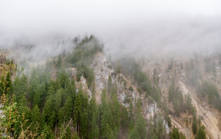 Bavarian alps in a fog - Germany photo