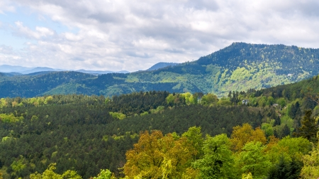View of Vosges mountains in Alsace - France Stock Photo