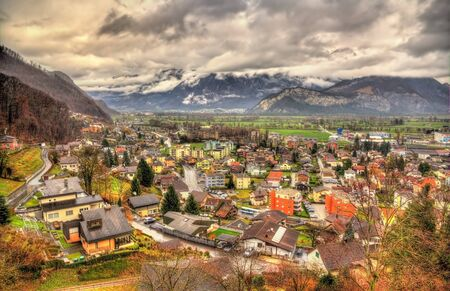 winter forest: View of Sargans village in Swiss Alps