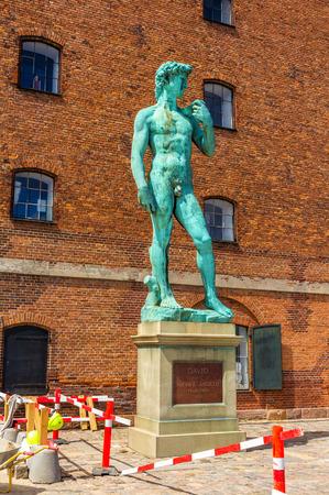 naked statue: Copy of Michelangelos David statue in Copenhagen, Denmark
