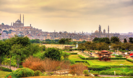 View of the Citadel with Muhammad Ali Mosque from Al-Azhar Park - Cairo, Egypt Stock Photo