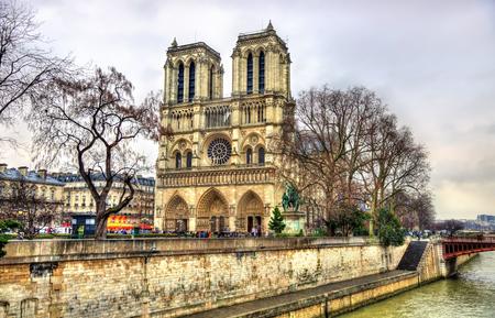 cite: View of the Notre Dame de Paris cathedral - France