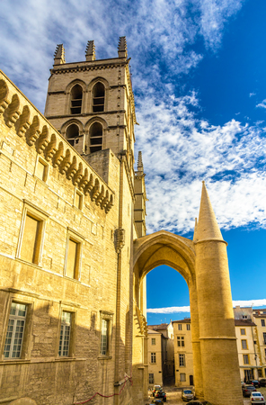 medieval medicine: Montpellier Cathedral of Saint Pierre - France, Languedoc-Roussillon Stock Photo