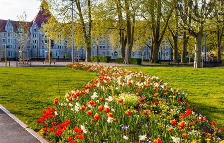 Flowers in Besancon in spring - France