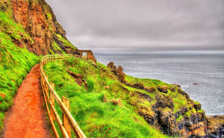 causeway: Path along the Giants Causeway in Northern Ireland