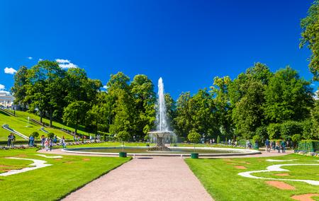 peterhof: Big French fountain in Peterhof Garden - Russia